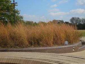 Cahokia Mounds, Tours and The Zoo